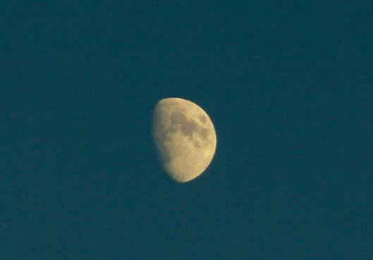 Copia di luna grande